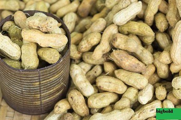 Tips Bisnis Biji-bijian, Kacang-kacangan, dan Minyak Sayur Eropa